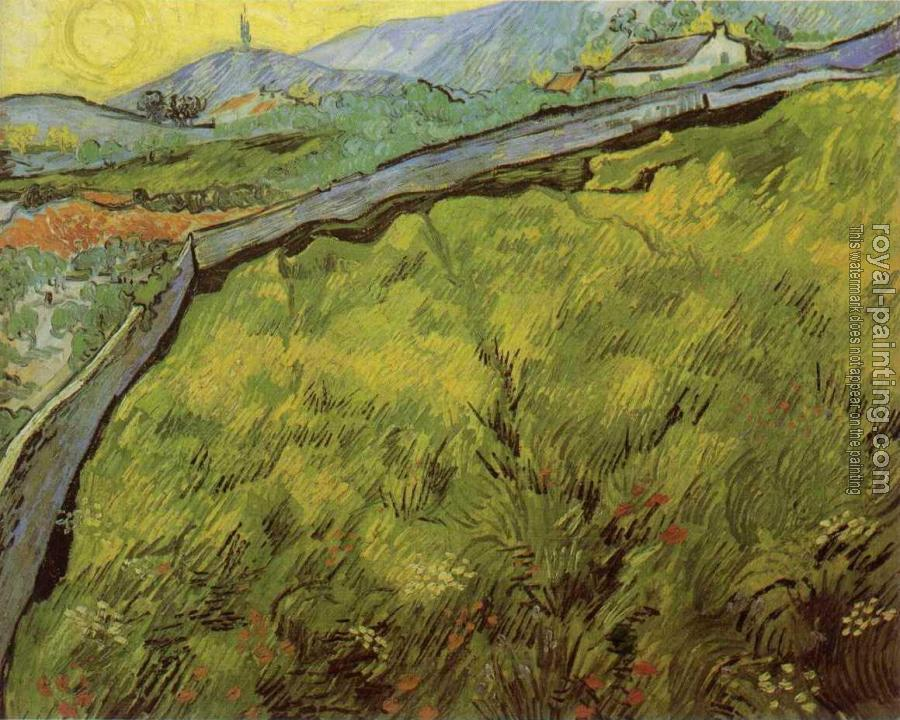 Vincent Van Gogh : Field of Spring Wheat at Sunrise